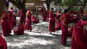 5A Mönche debatieren