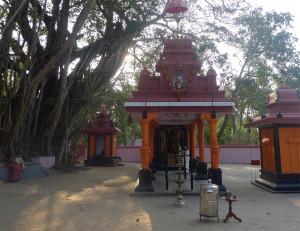 15A Tempel u Bodhibaum